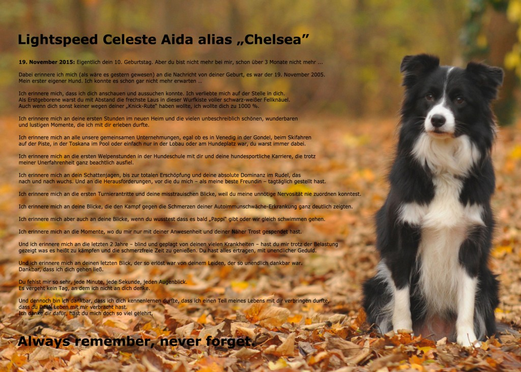 chelsea_nachruf